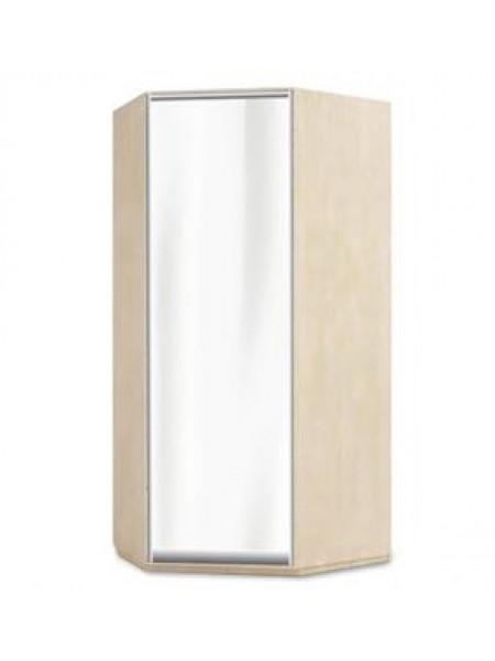 Шкаф угловой 950х950х600х2400 1-дверный